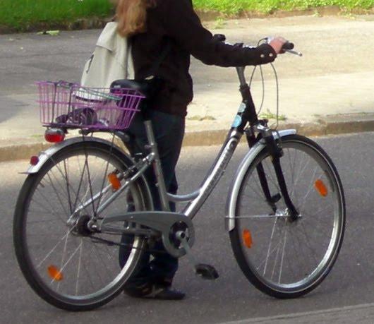 fahrrad fahndung wiedergefunden gestohlenes pegasus. Black Bedroom Furniture Sets. Home Design Ideas