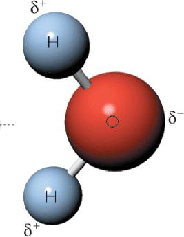 Molècula d'aigua