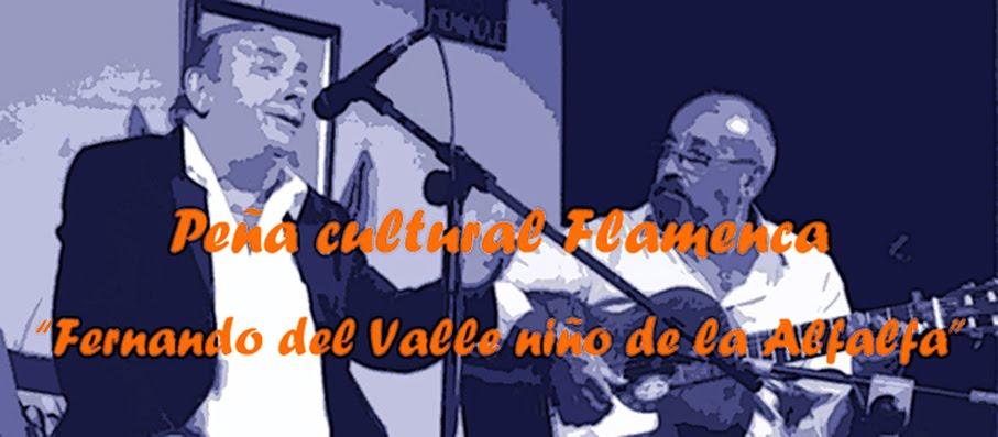 """Peña Flamenca """"Niño de la Alfalfa"""""""