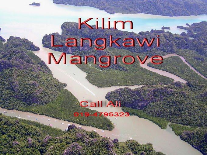 Kilim Langkawi Geopark Boat Service