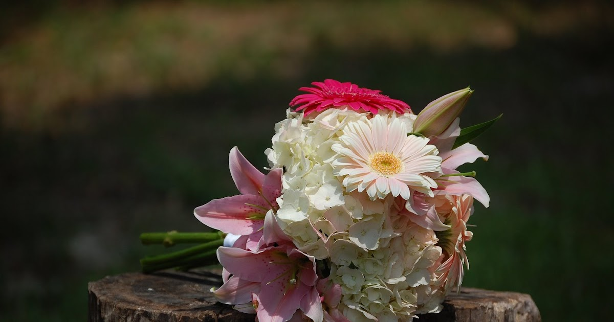 Tallahassee Wedding Florist SnapDragon Events Wedding Designs By