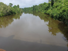 RIO ARURI