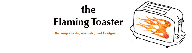 The Flaming Toaster