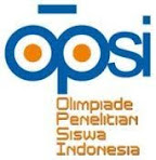 OPSI 2010