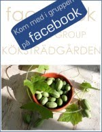 KKSTRDGRDEN - facebook