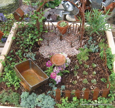 miniature garden plants