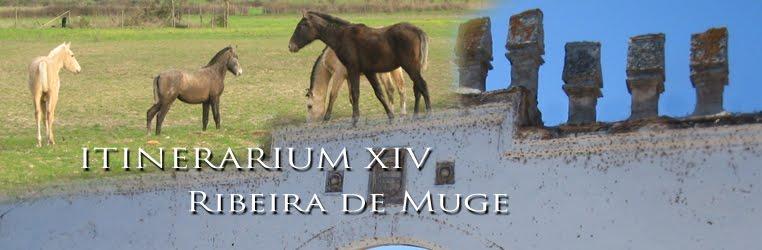 Itinerarium XIV - Ribeira de Muge