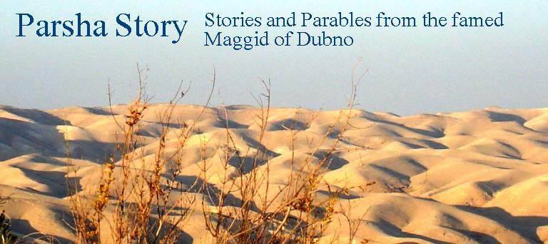 Parsha Story