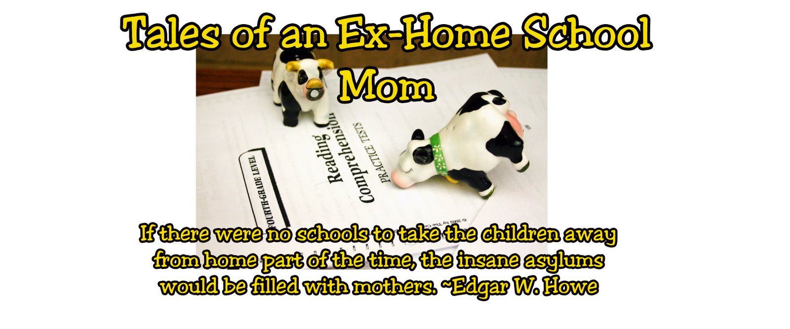 Tales of an Ex-Home School Mom