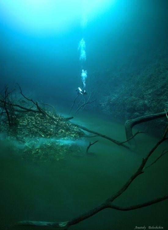Ada Sungai Dalam Laut