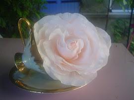 """roos """"Marie Antoinette"""" en geurt zelfs naar franse rozenparfum!"""