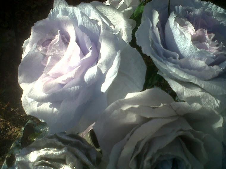 Rozen in Provençaalse kleuren