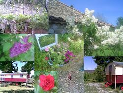 roulotte chez nous en Drôme