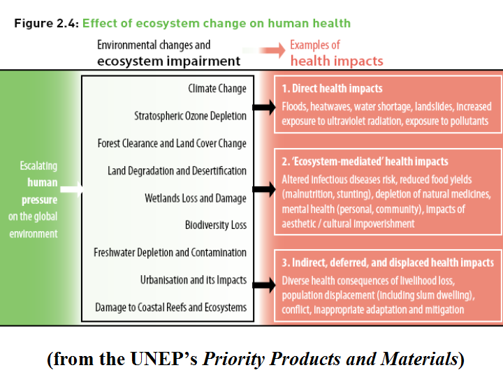 direct and indirect impacts on health Climate change and public health fact weather and climate can have direct impacts on our health and can direct and indirect health impacts could be worsened.