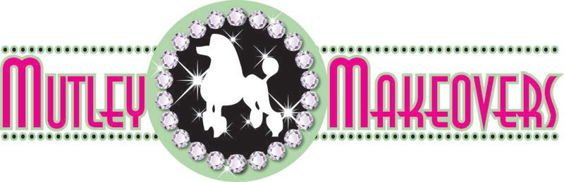 Dog Grooming Salon Mutley Makeovers Tamworth