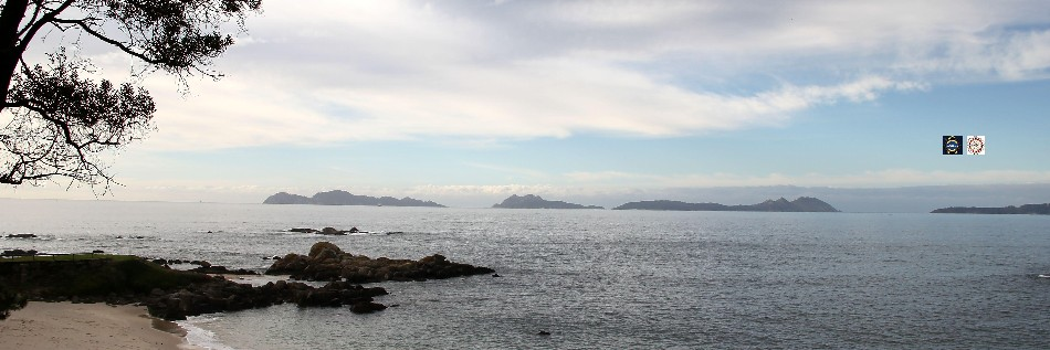 Observador de buques shipspotter en Vigo