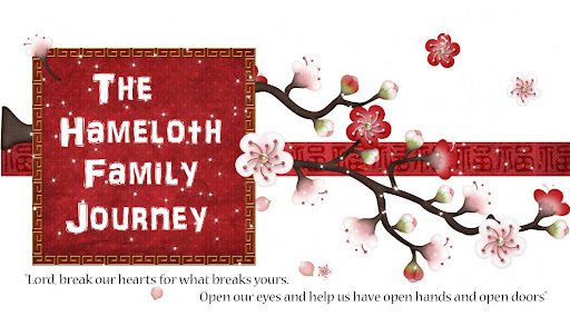 The Hameloth Family Journey