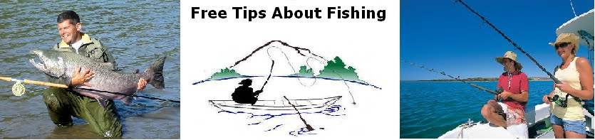 Free Tips About Fishing