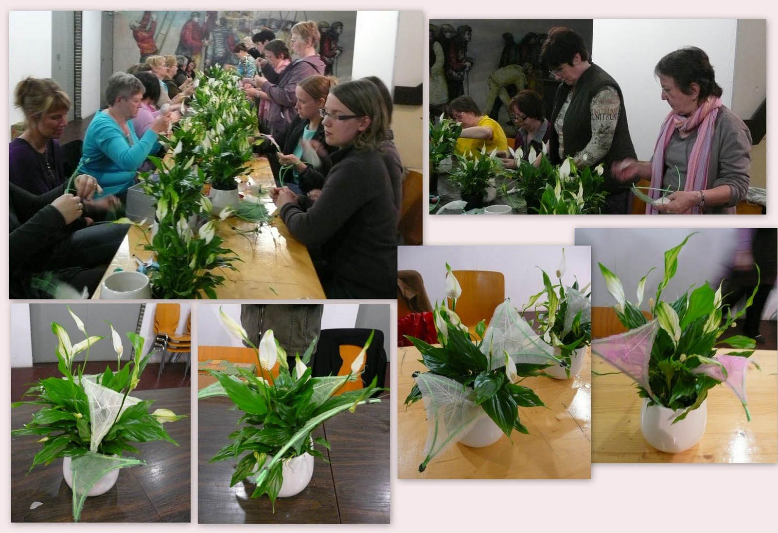 Atelier art floral antoing une plante originale for Plante originale