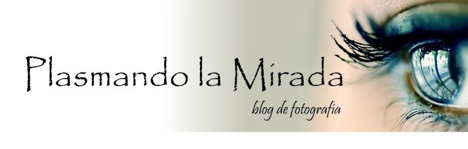 Plasmando la Mirada. Blog de Fotografia de Pablo Izquierdo