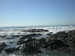 Cambria, by the sea
