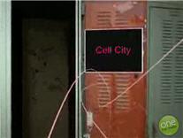 Naar de verfilming van celbiologie