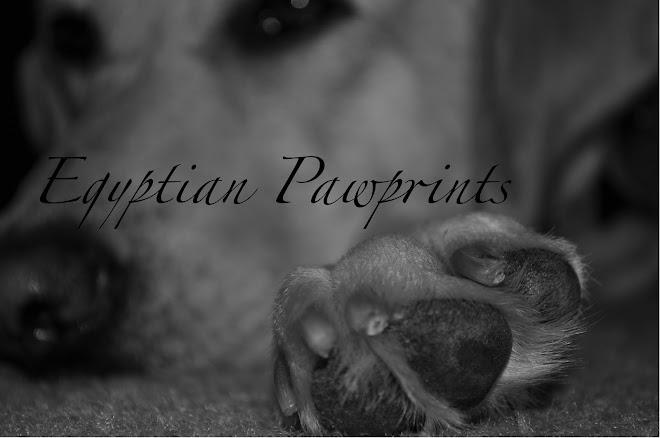 Egyptian Pawprints