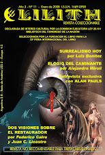 Revista Lilith Nº 11