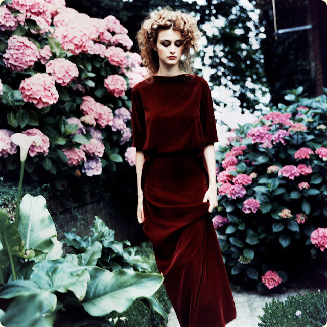 art nouveau inspired with velvet and hydrangeas, styled by Grace Coddington