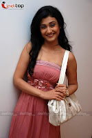 Bhaskar Bharrti Ragini Khanna photo shoot