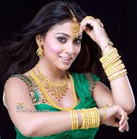 Shriya Saran spicy picture with Diamond & Gold Jewellery