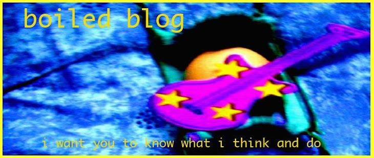 Boiled Blog