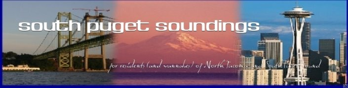 South Puget Soundings: Real Estate in North Tacoma