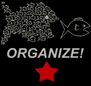 [organize.jpg]