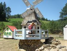 Tiny Town wind mill