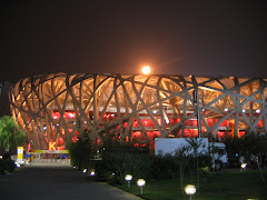 Bird's Nest @ Night