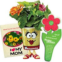 flower seed gifts