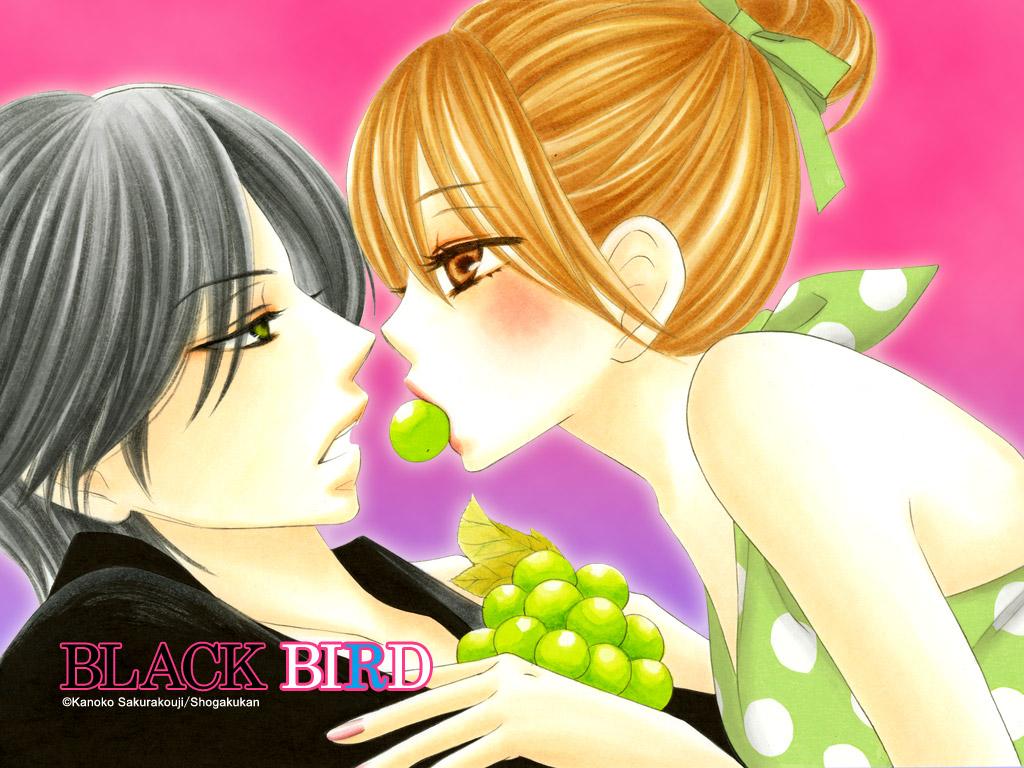 http://2.bp.blogspot.com/_bGLlUW1Vm18/TDKWyyI2YcI/AAAAAAAABCs/D6-3NxMQ41k/s1600/Black+Bird+Wallpaper+(5).jpg