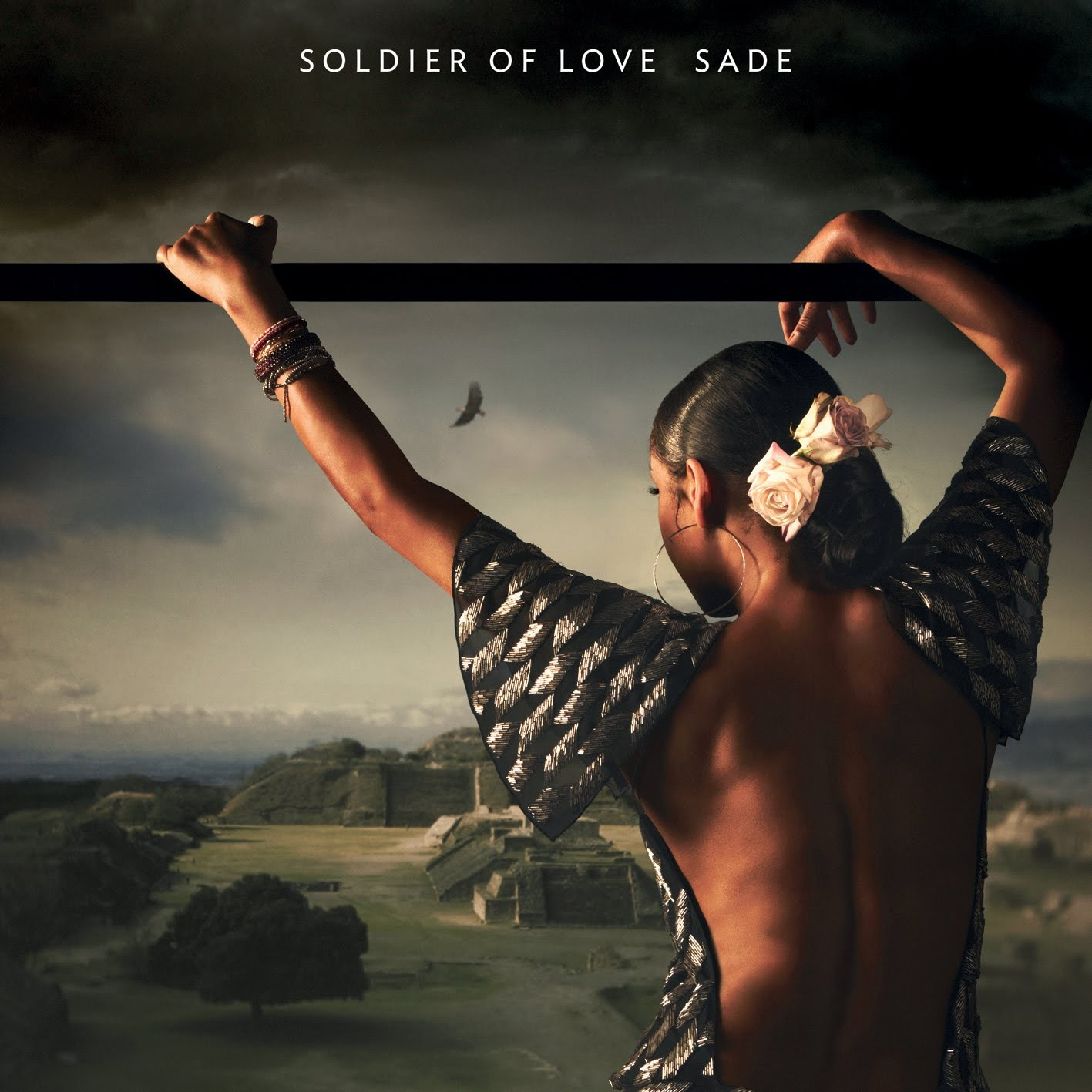 Sade Wallpaper http://wallpaperjunctiondownload.blogspot.com/2011/03/soldier-of-love.html