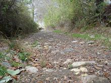 Ls caminos.../Os caminhos...