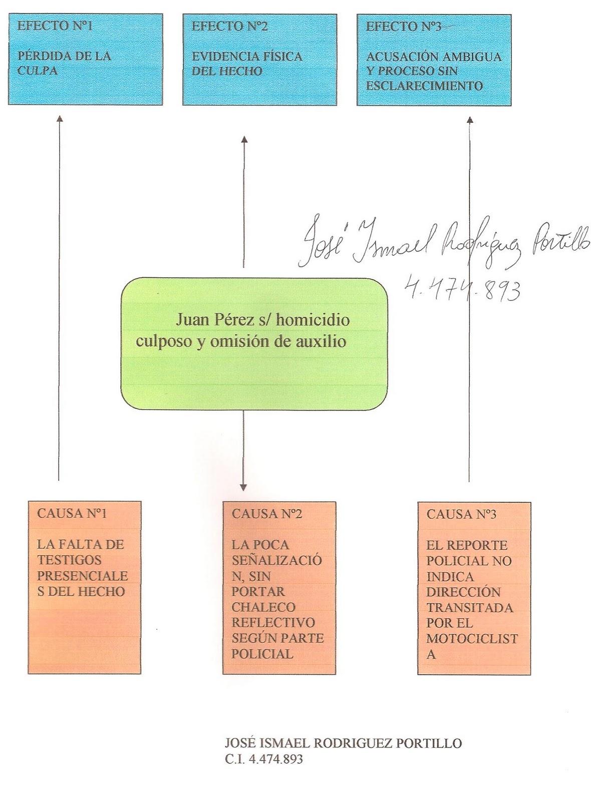 Metodolog a de la investigaci n seminario ii arbol de for Investigacion de arboles
