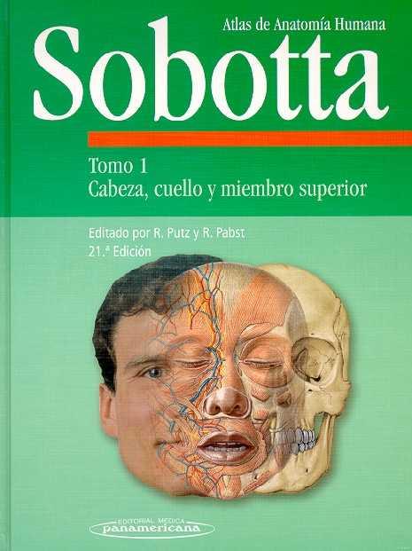 la anatomia humana