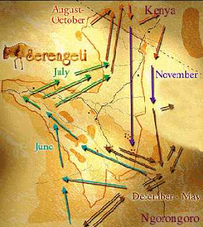 serengeti migration map