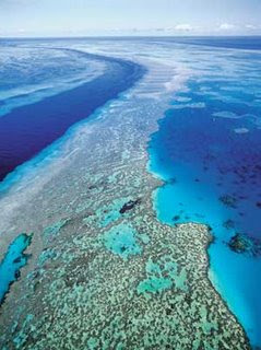 Seven Underwater Wonders of the World