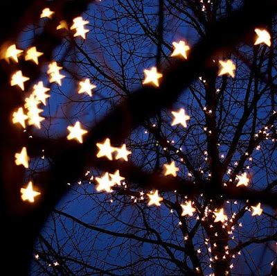 SOMERSAULT Twinkle Lights
