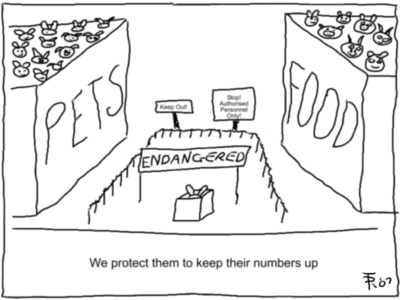 [We+protect+them+to+keep+their+numbers+up.jpg]