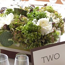 wilmington nc bloomersblog simply succulent wedding flowers
