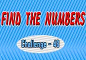 Find the Numbers Challenge 48 walkthrough
