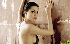 Angelina Jolie  Hot Sexy Actress Hollywood Star Pictures Wallpapers Widescreen Supermodel Photo Gallery Widescreen Wallpaper Latest Wallpapers 400x350