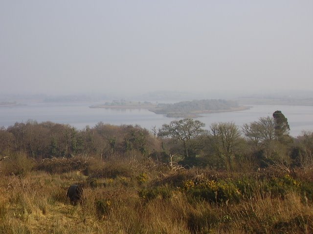 Lough Gara
